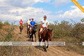 Катание на лошадях в Феодосии - Крым