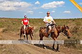 Конные прогулки недорого в Феодосии - Крым