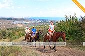 На маршруте конных прогулок на Тепе-Оба с видом на Феодосию