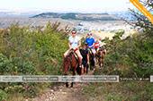 На маршруте конных прогулок на Тепе-Оба в Феодосии